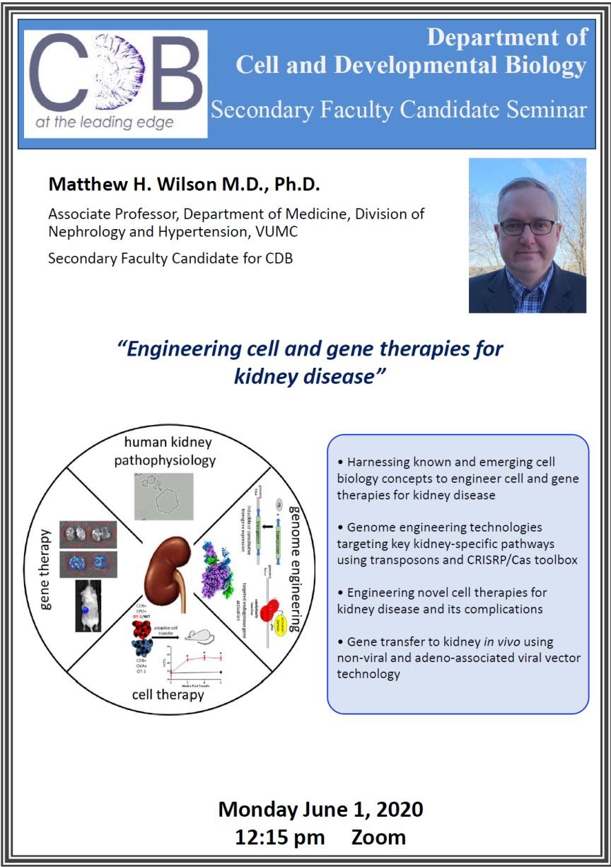 Matthew Wilson Presentation image