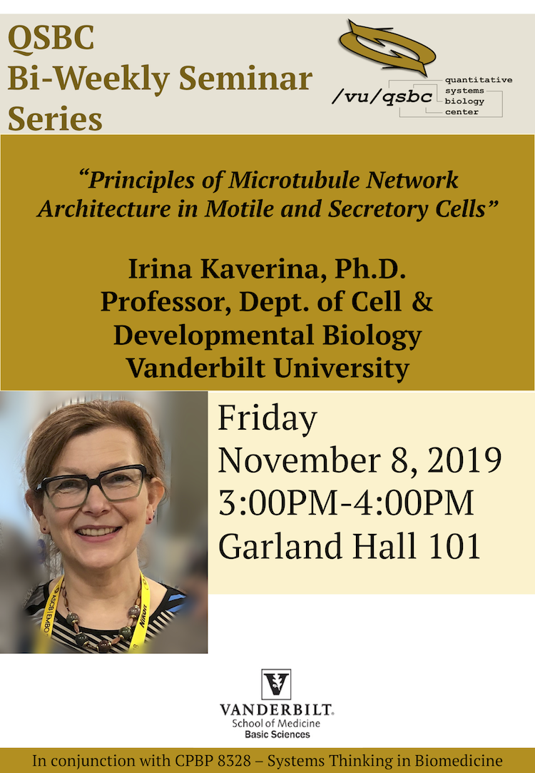 Irina Kaverina | November 8, 2019 Seminar Flyer