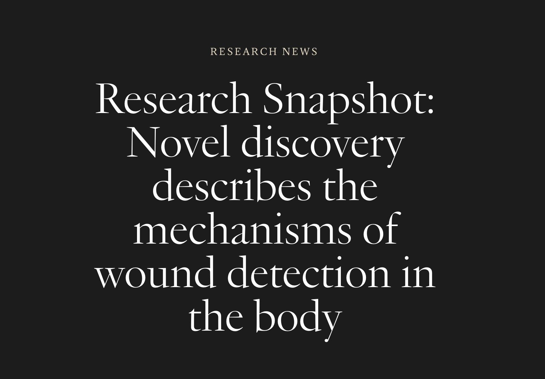 Research snapshot thumbnail